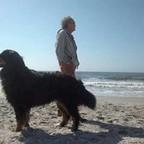 Piet Dik's profielfoto