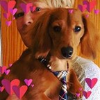 Kris En Karin's profielfoto