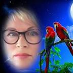Sylvia de Kiewit's profielfoto