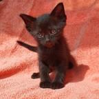 Cindy Otten's profielfoto