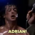 Adrian Djamchidi's avatar